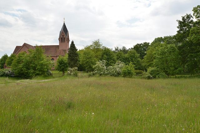 honig-im-kopf-lenzerwische-kirche-drehorte-a 13