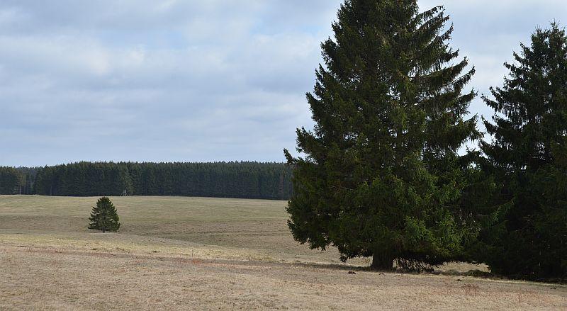 bibi-und-tina-3-koenigshuette-b_13_00152
