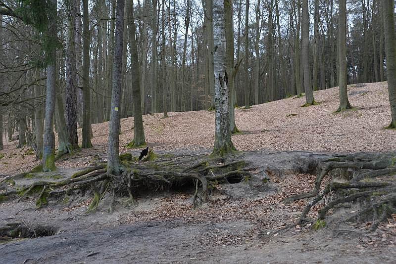 bibi-und-tina-3-liepnitzsee-boot-10
